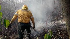 Buscan sofocar un incendio en San Javier por tierra y aire