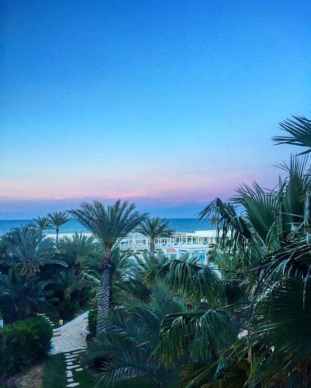 #sunset #djerba #whatelse #natureislife #lifeinblue #palmtrees #beach #mediterraneansea