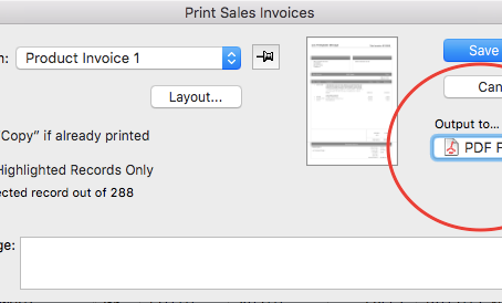 What causes a large PDF file size?