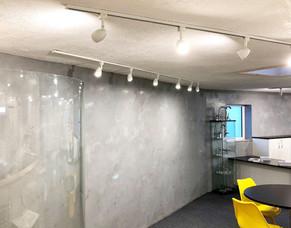 Marmorino Wall - Rialto Wall Designs.JPG