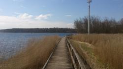 Naturschutzgebiet Südlicher Priwall