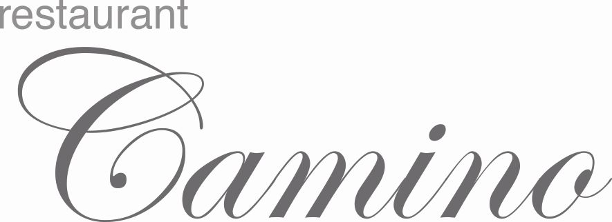 Logo Camino (002)