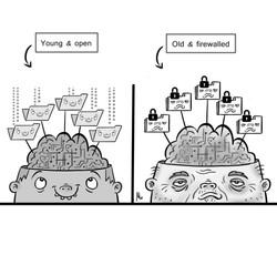 brainyoung
