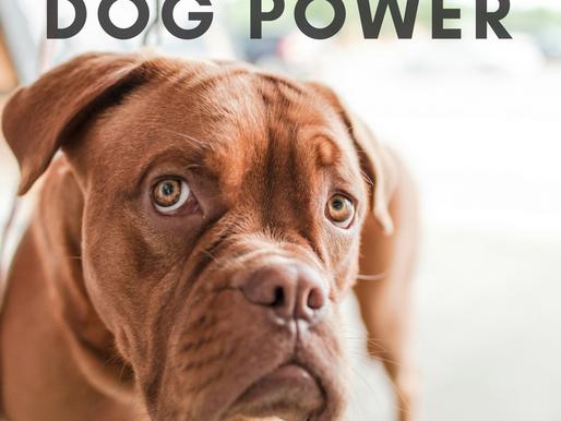 God Power versus Dog Power