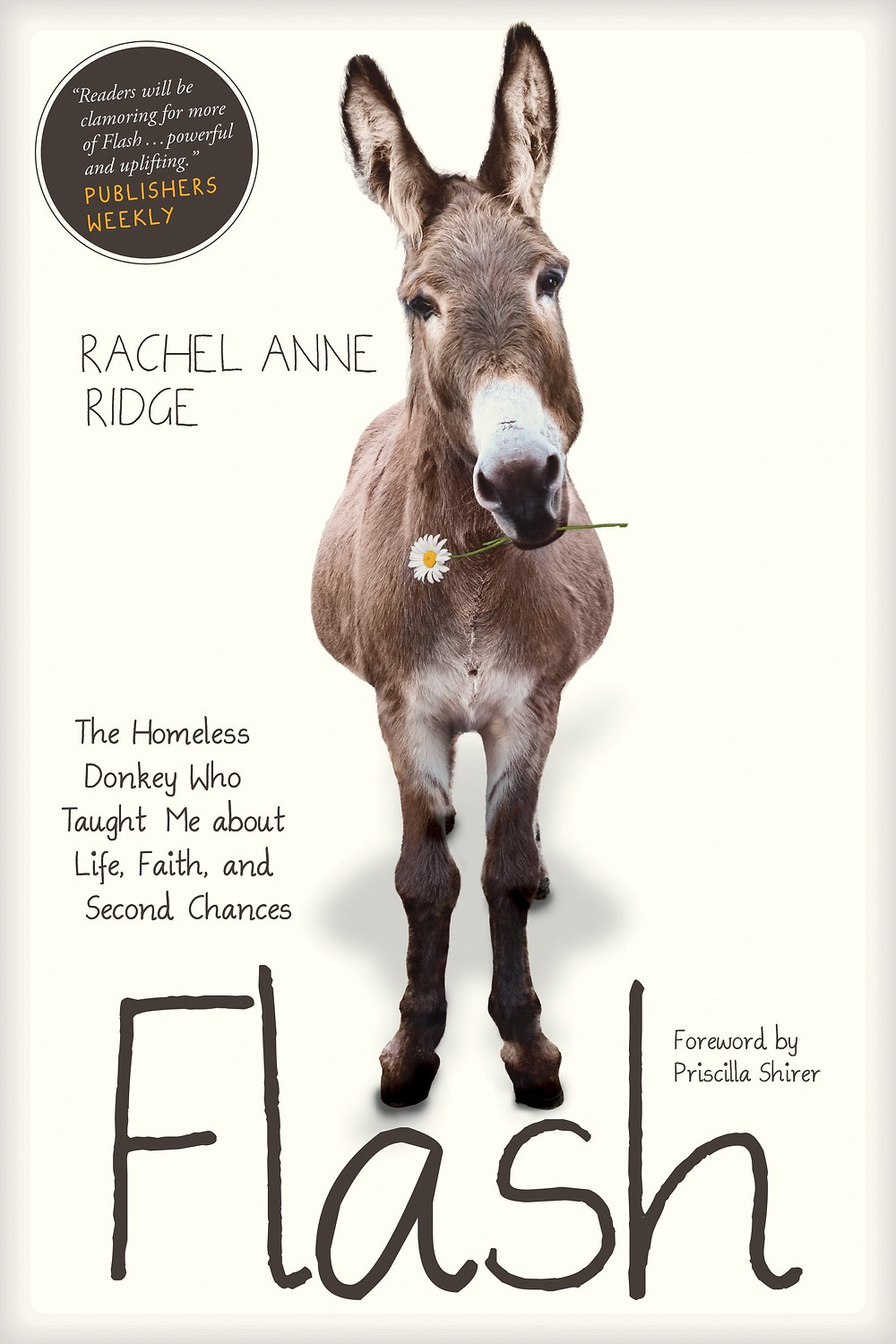 Flash the Homeless Donkey by Rachel Anne Ridge