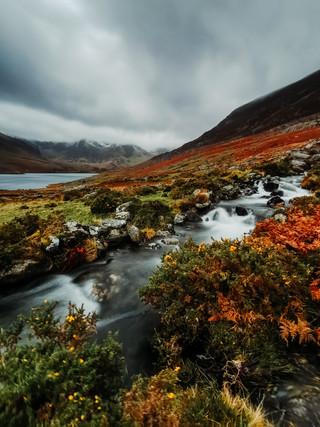 Huawei Images-2.jpg