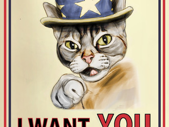 Kitten Fosters Needed!