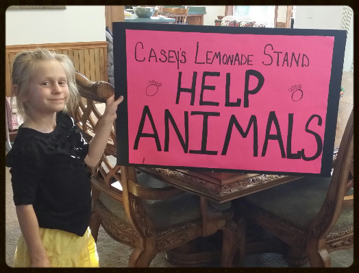 Casey's Lemonade Stand Sign_Friends of the Animal Village
