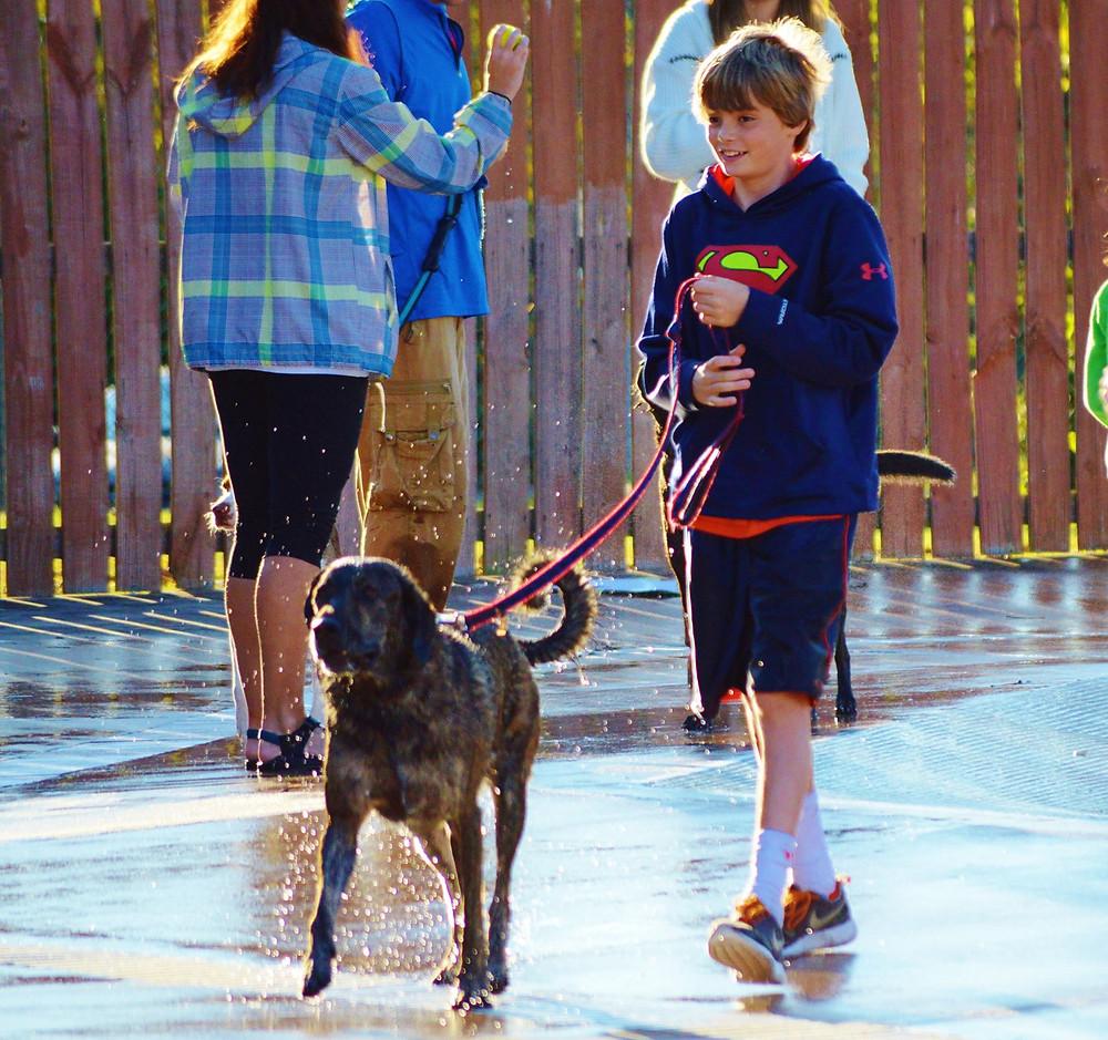 Doggie Paddle Day_Kid Walking Dog.jpg