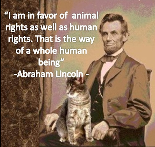 Animal Quotes_Abraham Lincoln.jpg
