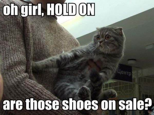 girl hold on are those shoes on sale.jpg