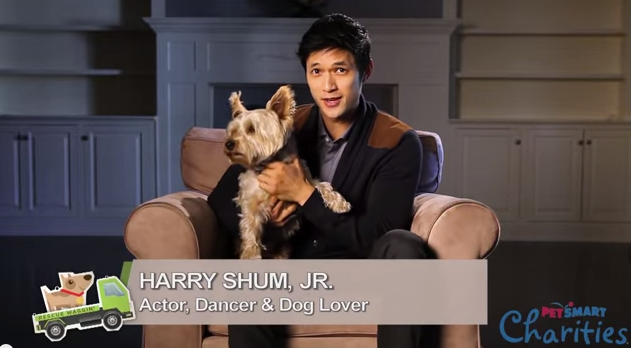 Harry Shum Jr._PetSmart Rescue Waggin': Tales from the Road_Friends of the Animal Village.png