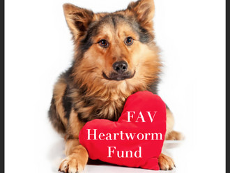 FAV Heartworm Fund