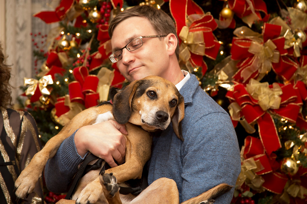 Santa Paws_Friends of the Animal Village_boogie adopted.jpg