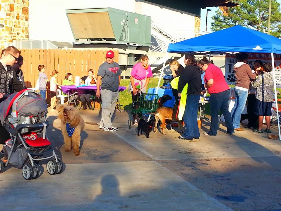 Doggie Paddle Day_Microchipping Station.jpg