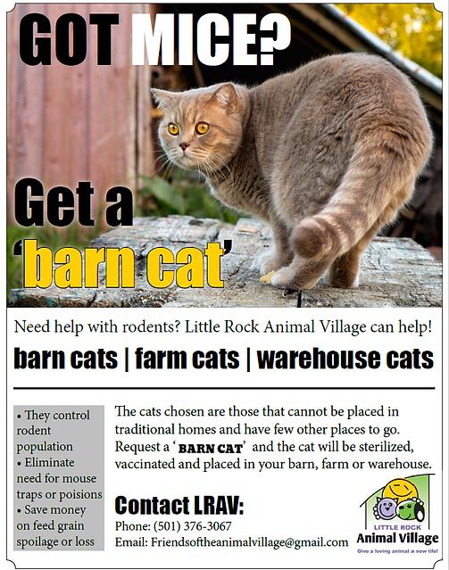 Friends of the Animal Village Barn Cat Program Flyer