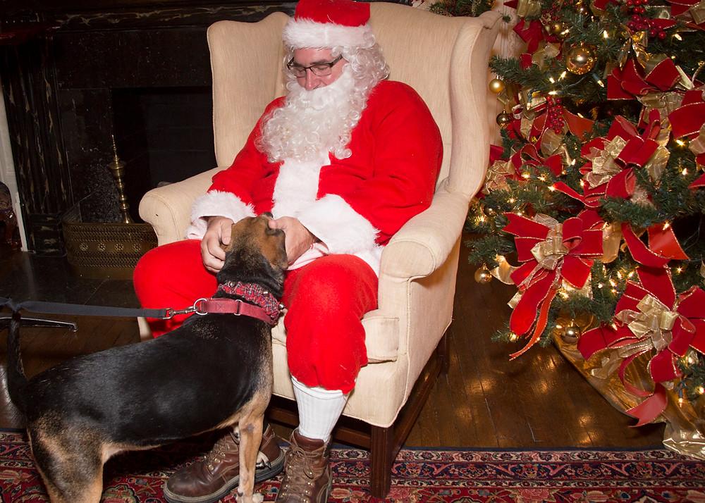 Santa Paws_Friends of the Animal Village_santa with boogie.jpg