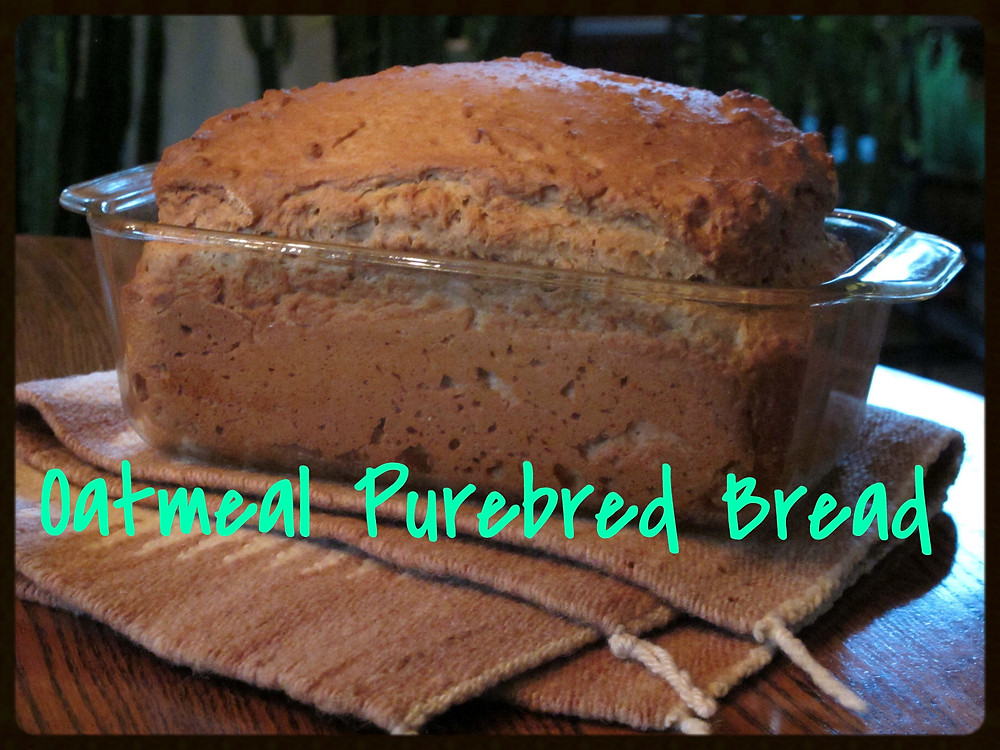Oatmeal Purebred Bread_Recipe of the Week_Friends of the Animal Village