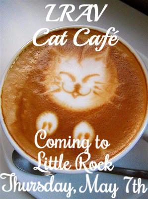 Cat-Coffee-Art__13_edited.jpg
