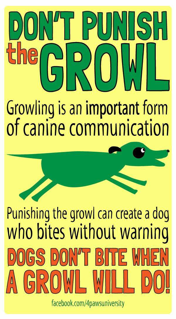 dont punish the growl.jpg