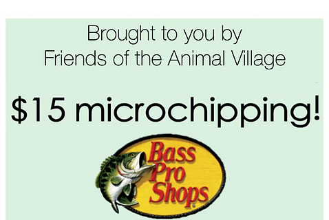 Bass pro microchipping 04182020.png