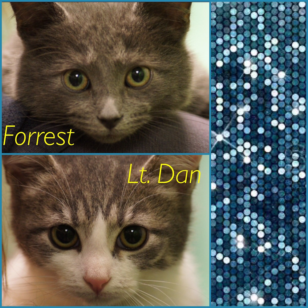 Forrest and Lt. Dan_Little Rock Animal Village_Friends of the Animal Village.JPG