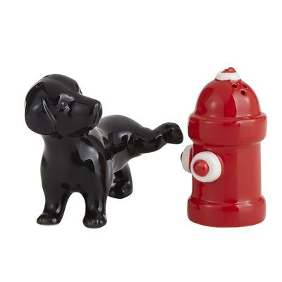 11_Dog & Fire Hydrant Salt & Pepper Shakers_PIER 1 IMPORTS.jpg