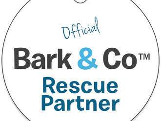 Support Little Rock Animals with BarkBox!