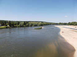 La Loire sauvage...