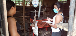 Yara weighing wood.jpg