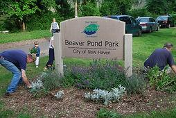 Friends of Beaver Ponds Park.jpg