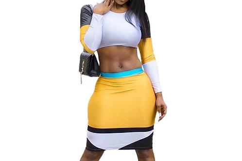 2 piece long sleeve skirt set