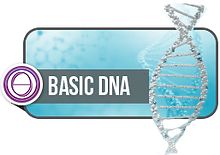 basicDNAlogo.png