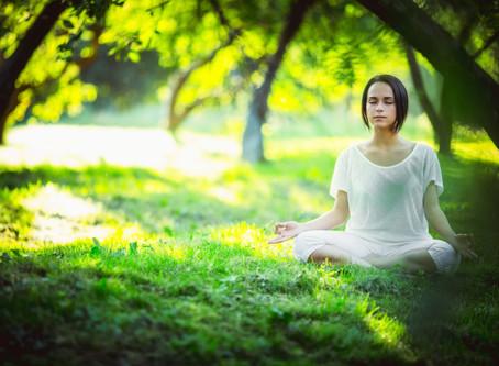 MEDITAÇÃO TERAPÊUTICA:               meditação do mês