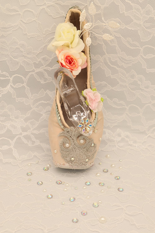 "Customized Ballet Shoe Art ""Cinderella"""