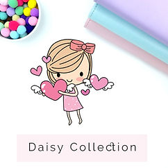 daisy collection.jpg
