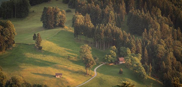 golfb.jpeg