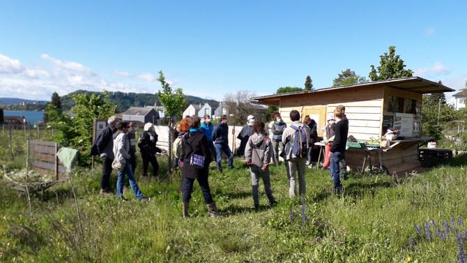 Cours de permaculture avec Habitat durable