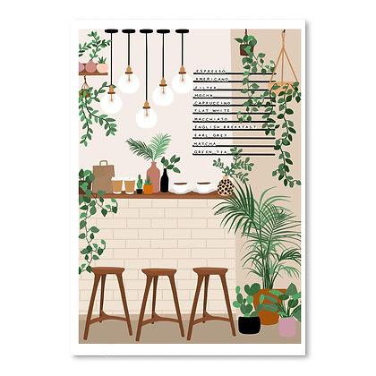 coffee & plants