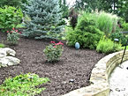 Allen's Tree Service Inc + Landscaping + Dyed Brown Mulch