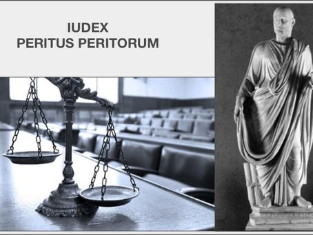 Iudex peritus peritorum