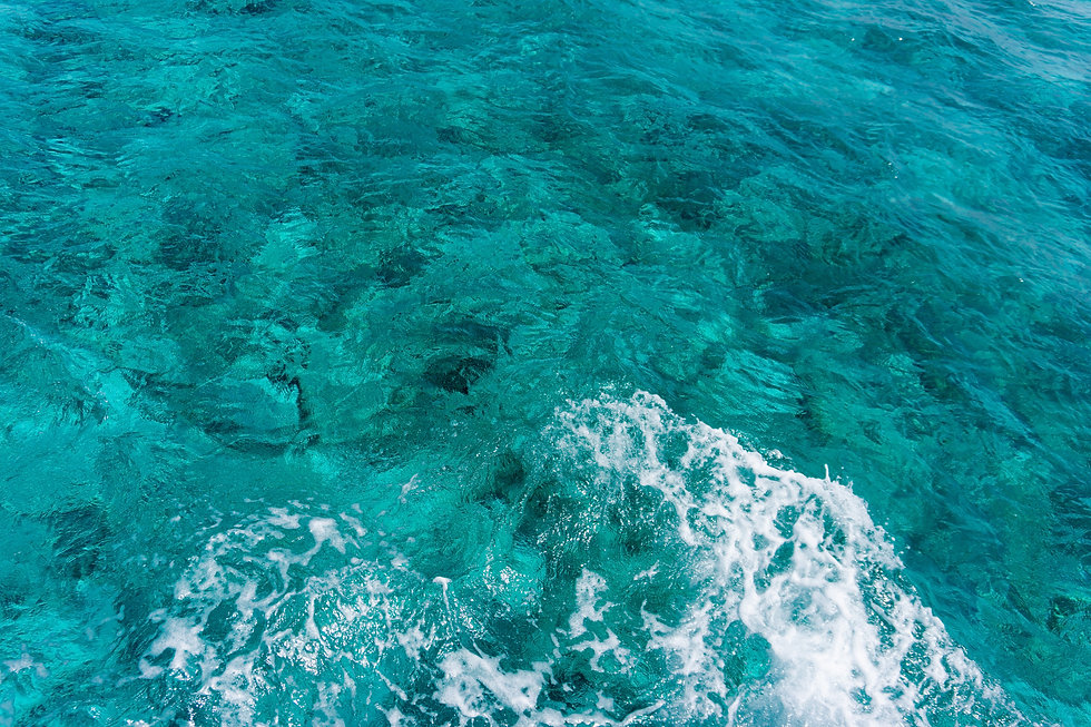 ocean-2575271.jpg