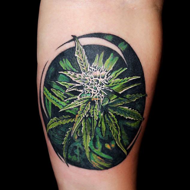WEED-TATTOO-colour-realism-ripz-tattoo