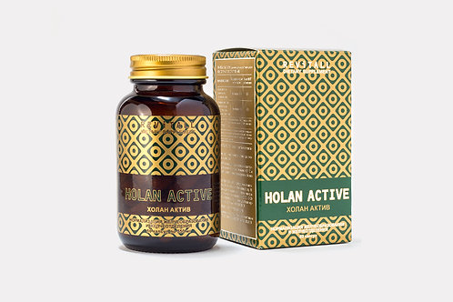 REVITALL HOLAN ACTIVE, 60 КАПСУЛ