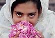 イランのアヘン撲滅プロジェクト