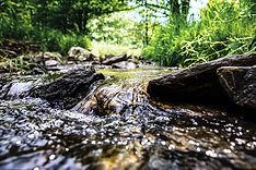地下160メートル以上の深層から汲み上げる黒い森の湧き水