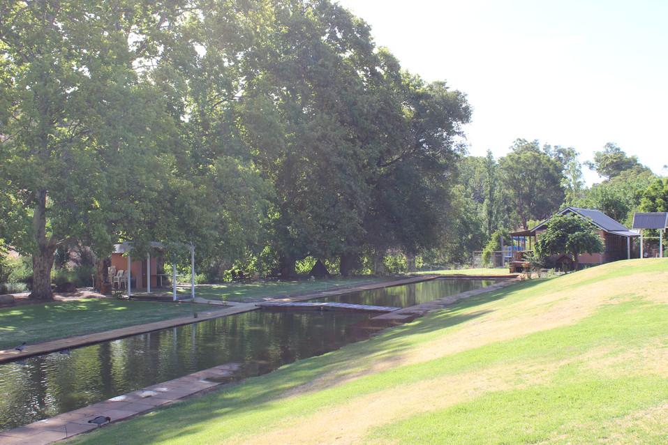 Grove Park Koi pond