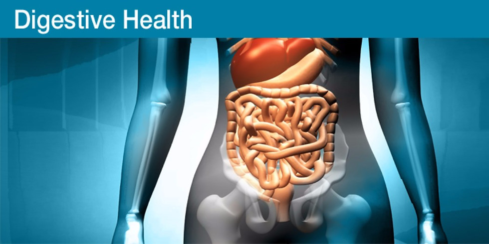 Online Webinar - Fixing our gut issues (1)
