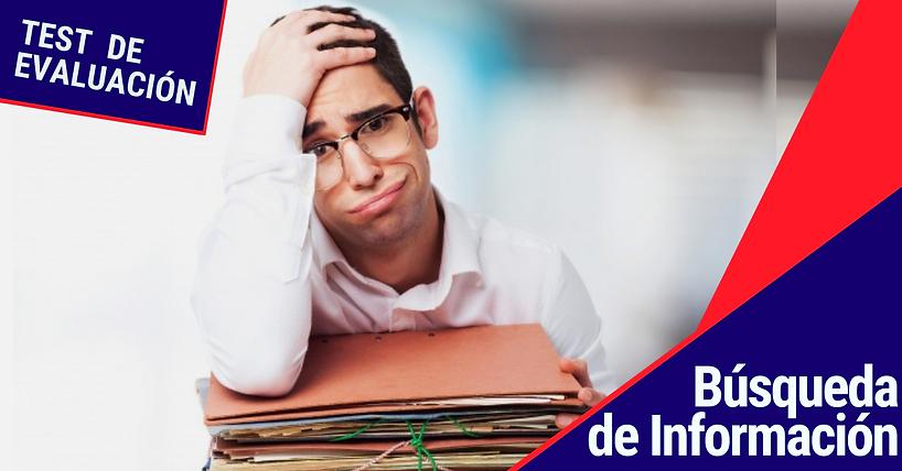 evaluacion_busqueda_de_informacion.png