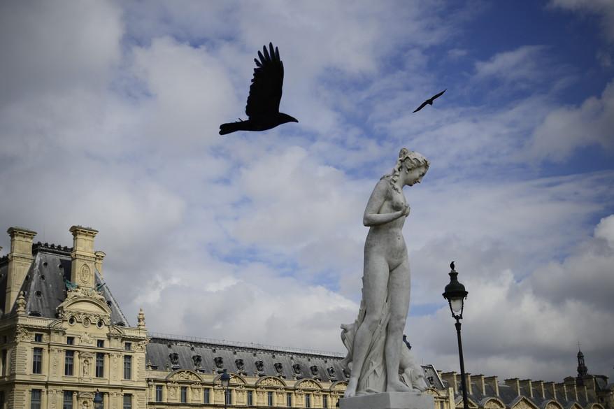 Paris, Louvre.JPG
